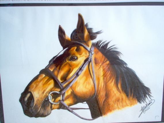 Dessin cheval en couleur - Tete de cheval a imprimer ...