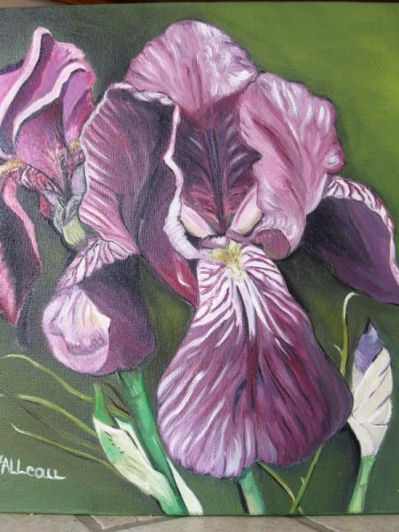 TABLEAU PEINTURE lys mauves Fleurs Peinture a lhuile  iris mauves