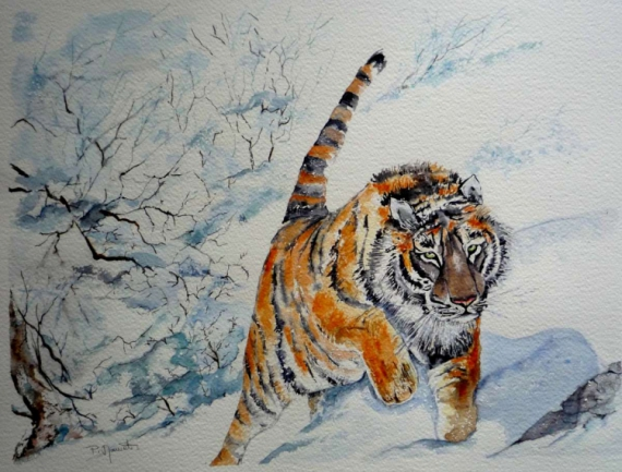 tableau peinture tigre animal flin sauvage tigre de sibrie. Black Bedroom Furniture Sets. Home Design Ideas