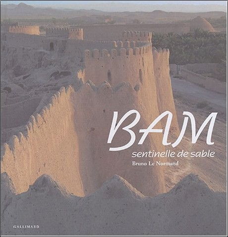 Bruno Lenormand - Bam : Sentinelle de sable