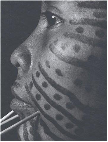 Davi Kopenawa - Yanomami : L'esprit de la forêt