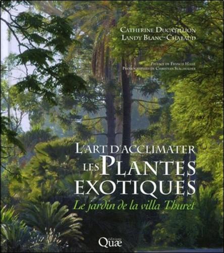 L 39 art d 39 acclimater les plantes exotiques le jardin de la for Jardin villa thuret