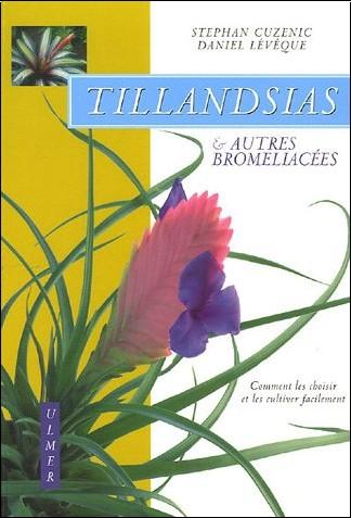 Broméliacées Daniel-leveque-tillandsias-et-autres-bromeliacees-comment-les-choisir-et-les-cultiver-facilement-o-2841382451-0