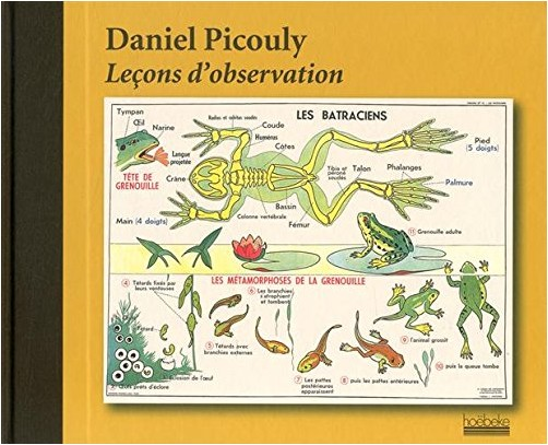Daniel Picouly - Lecons d'Observation