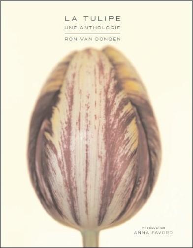 Ron Van Dongen - La tulipe, une anthologie