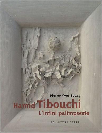 Pierre-Yves Soucy - Hamid Tibouchi : L'infini palimpseste