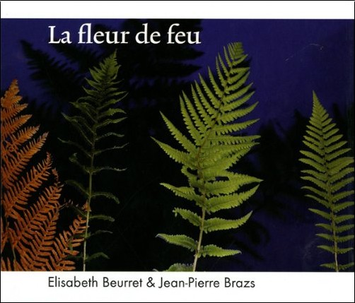 Elisabeth Beurret - La fleur de feu
