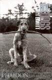 Dog dogs (en anglais) - Elliott Erwitt