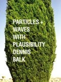 Particles + Waves With Plausibility - Dennis Balk