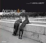 Animaux & cie - Cécile Guilbert