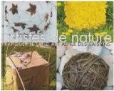 Artistes de nature : Pratiquer le land art au fil des saisons - Marc Pouyet