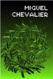Miguel Chevalier - Collectif
