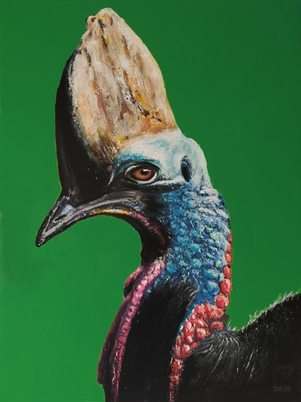 TABLEAU PEINTURE oiseau bird tête head - Casoar