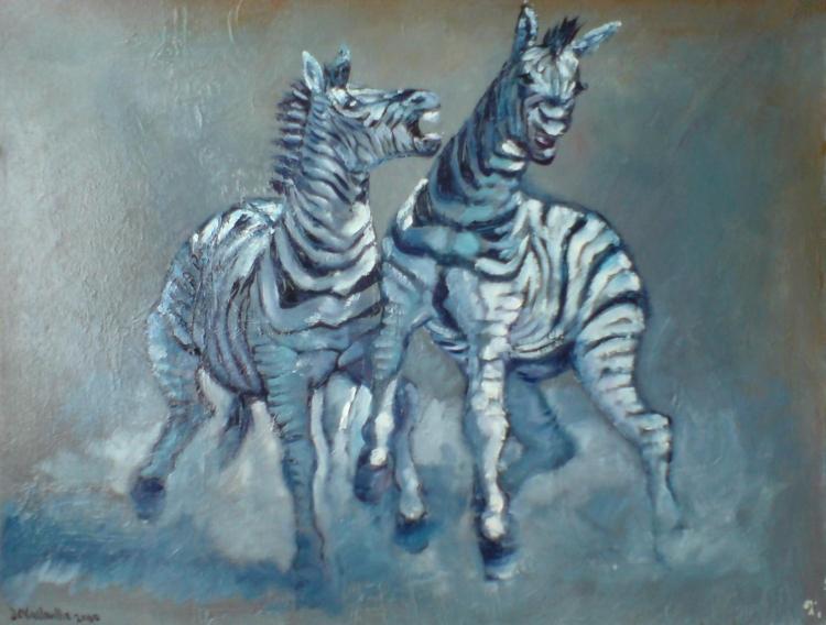 zebragarre