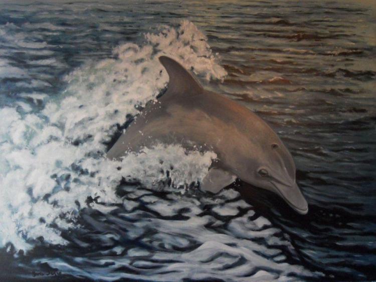 TABLEAU PEINTURE Dauphin marine eau vague - Liberté 1