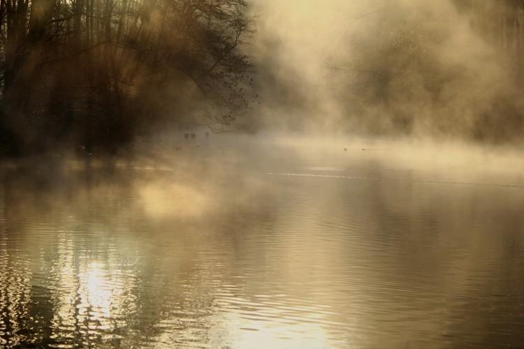 PHOTO Etang Brume Hiver Normandie - Petit matin, l'étang fumant de brume