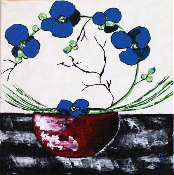 orchidée bleu dans un pot rouge