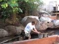 Construction faux rocher decoratif - Etape 3 - www.faux-rock.com