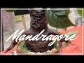 [DIY #1] Mandragore (Concours FINI)