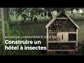 Construire un hôtel à insectes | Fabriquer des abris pour animaux