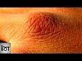 10 SIGNES QUI MONTRENT QUE VOUS NE BUVEZ PAS ASSEZ D'EAU | Dr Bot