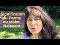 Secret des couleurs signification du violet/parme par Hannah Sembely