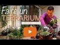 Faire un terrarium verre-Terrariums plants