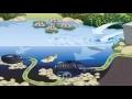 Construire l'étang de jardin facile un guide pas à pas