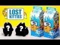Découvrir un chat dans une brique de lait : Déballage des paquets de LOST KITTIES