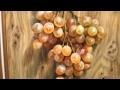 """""""La grappe de raisin"""" par Gérard DUBOIS"""