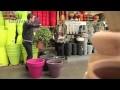Choisir un grand pot d'extérieur pour sa terrase - Jardinerie Truffaut TV