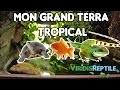GRAND TERRARIUM TROPICAL AVEC LEZARDS/TORTUE/POISSONS !