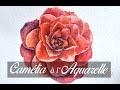 Fleur de Camélia à l'aquarelle (Papier Flamboyant)