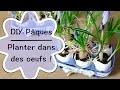 DIY - Créer une décoration fleurie de Pâques - Tutoriel pour planter des bulbes dans des oeufs