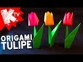 Origami Fleur Facile - Tulipe en papier