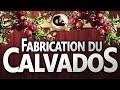[CALVADOS] LA FABRICATION DU CALVADOS - Le Singe Imbibé - EP4