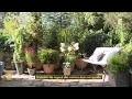 Quelles plantes pour se cacher de la vue des voisins ?