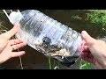 Comment Fabriquer un Piège à Poisson avec une Bouteille de Plastique