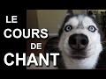 LE COURS DE CHANT - PAROLE DE CHIEN (ft. Clara Doxal)