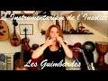 Les Guimbardes (Jew's Harp) - L'Instrumentarium de l'Insolite