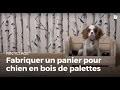Fabriquer un panier à chien en bois de palette | Recycler