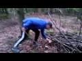 Champignons des bois #bolet #cepe #forêt #chercher #champignon