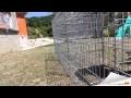 Montage mur en gabion - Tendance Gabion