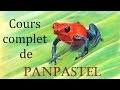 Cours de PanPastel : Grenouille