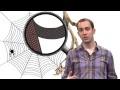 KEZAKO: Pourquoi la toile d'araignée est-elle si solide?