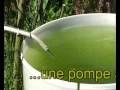 fabrication d'une éolienne de pompage simple et performante