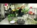 Tuto Composition florale d'Orchidées blanches