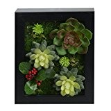 3D mur cintre atificial Fleurs Imitation bois avec cadre forme vase vert Plantes Décoration pour Mariage, succulente 20x 25cm