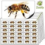 480 x autocollants abeille (38 x 21 mm) Étiquettes animaux autocollantes de qualité élevée par Zooify.