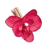 Au plaisir des yeux - 8 orchidées Fuchsia sur clip naturel Déco de table